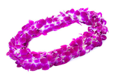 Graduation Day Flowers - Double Orchid Lei 1