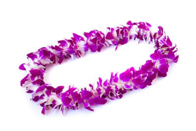 Graduation Day Flowers - Single Orchid Lei 1